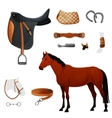 Set of equestrian equipment for horse vector
