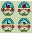 Icons on vintage background rooster turkey goose d vector