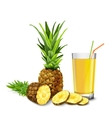 Pineapple juice glass vector