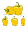 Yellow bell peppersweet pepper or capsicum vector