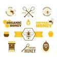 Bee honey label colored vector