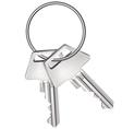 Keys isolated on white vector