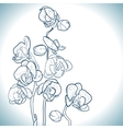 Orchid isolated on white vector