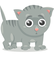 Kitten character cartoon vector