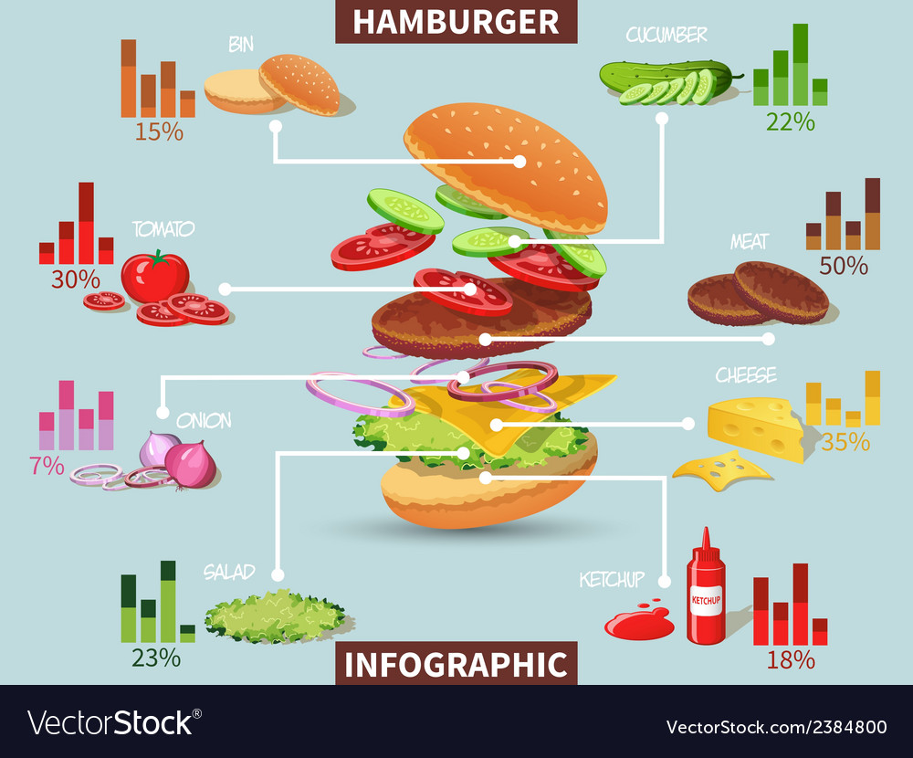 Hamburger ingredients infographic vector | Price: 1 Credit (USD $1)