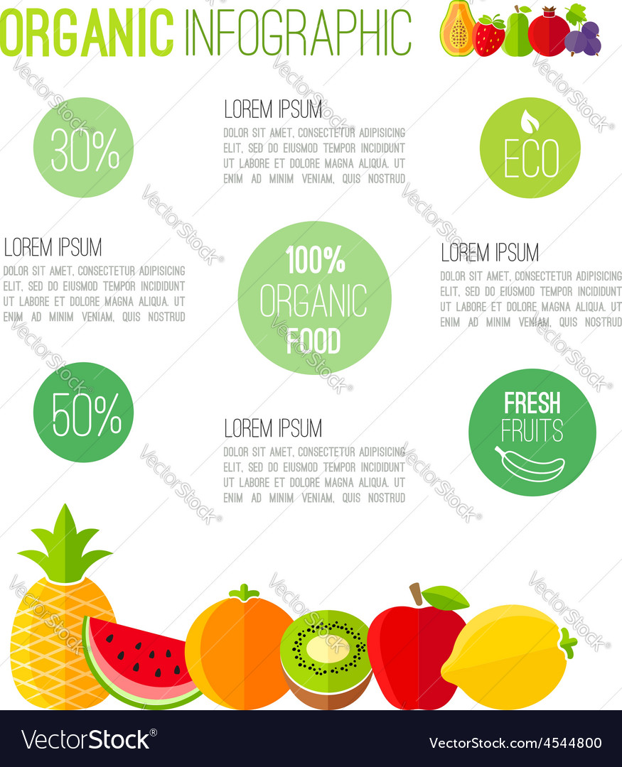 Organic infographic fresh fruits vector | Price: 1 Credit (USD $1)