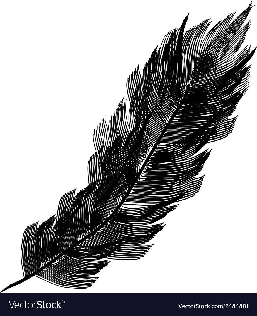 Black feather icon vector | Price: 1 Credit (USD $1)
