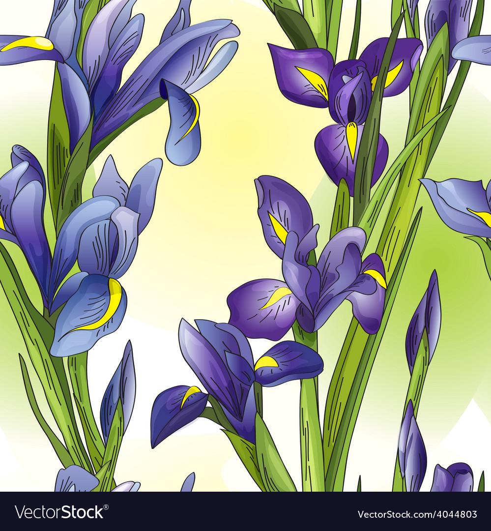 Blue irises vector | Price: 1 Credit (USD $1)