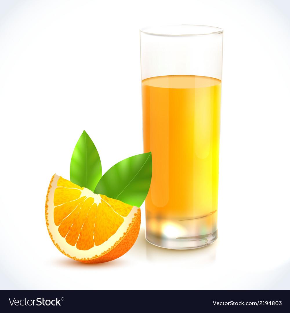 Orange juice in glass vector   Price: 1 Credit (USD $1)