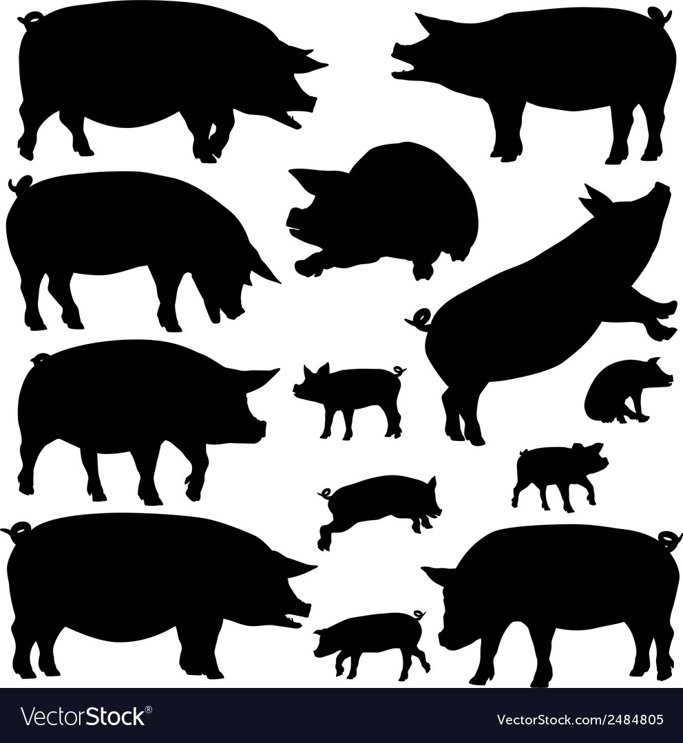 Pig silhouettes vector | Price: 1 Credit (USD $1)