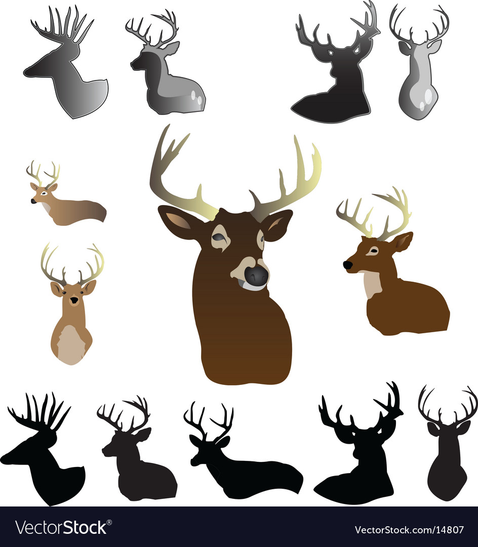 Deer vector | Price: 3 Credit (USD $3)