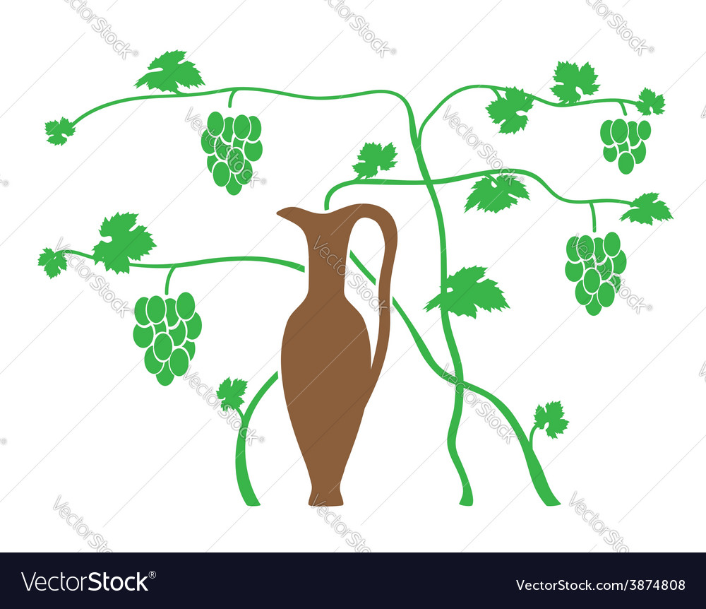 Green grape and brown jug vector | Price: 1 Credit (USD $1)