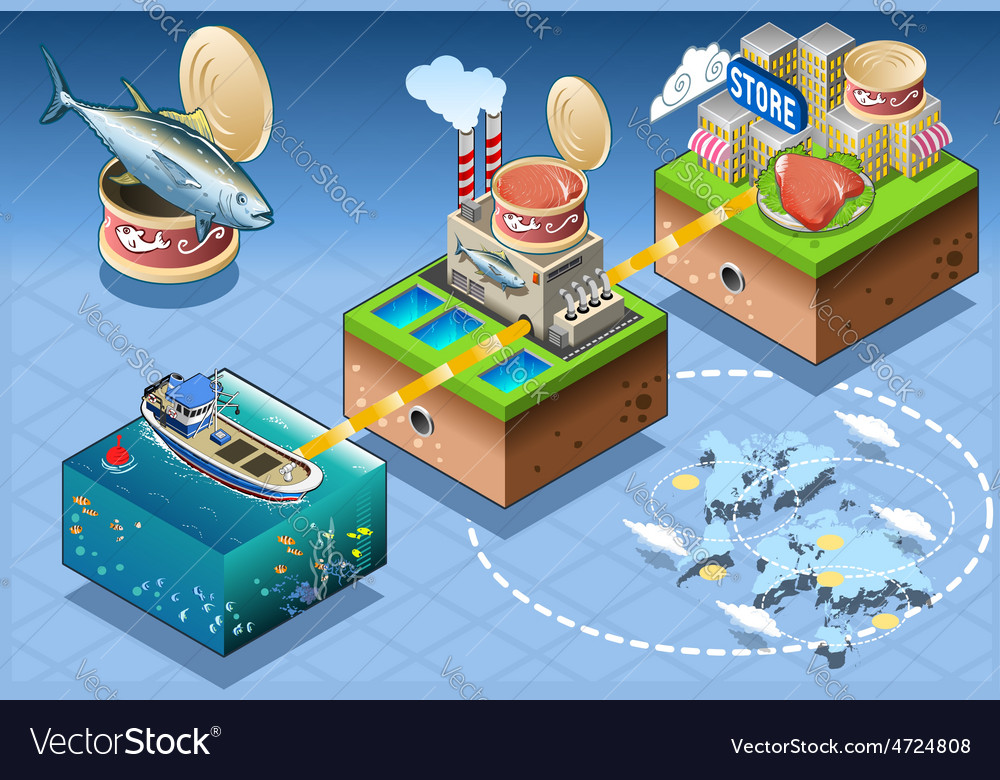 Isometric infographic tuna distribution chain vector | Price: 3 Credit (USD $3)