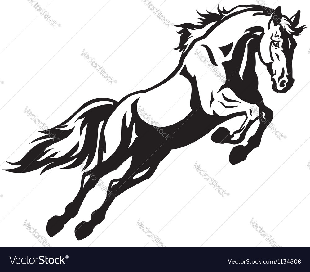 Jumping horse vector | Price: 1 Credit (USD $1)