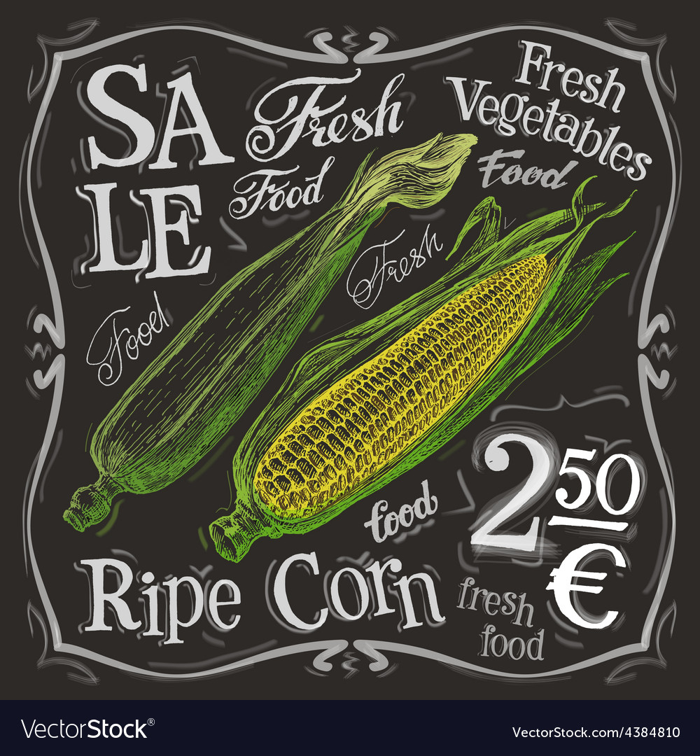 Ripe corn logo design template fresh food vector | Price: 3 Credit (USD $3)