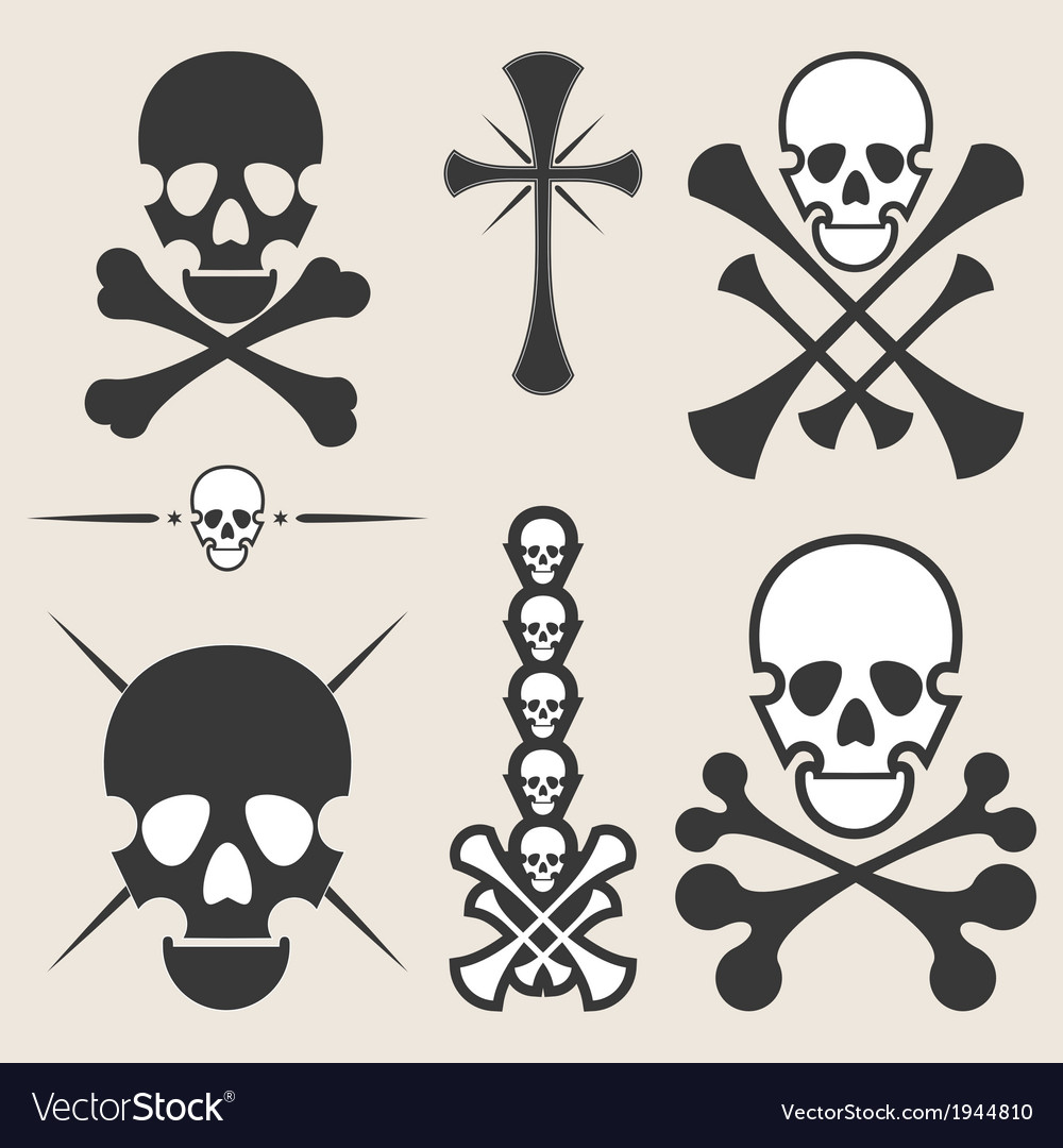 Set of different skulls vector | Price: 1 Credit (USD $1)