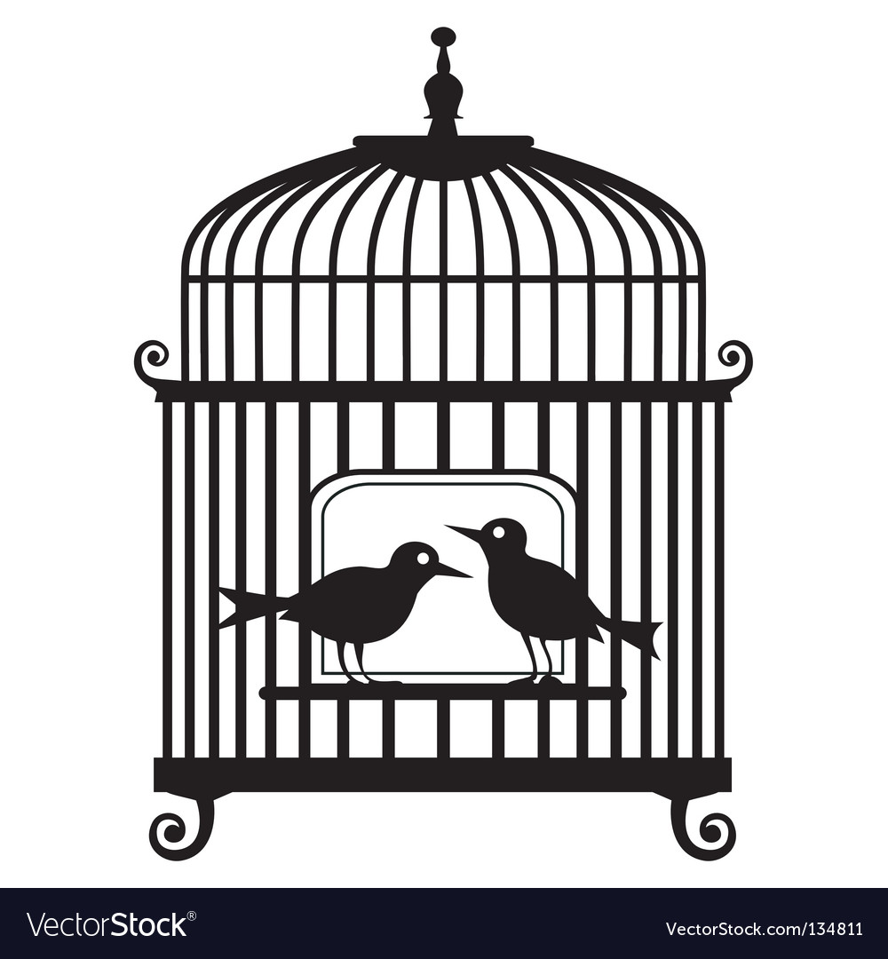 Birdcage vector | Price: 1 Credit (USD $1)