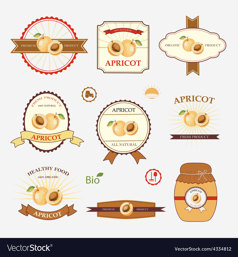 Apricot set of label design vector | Price: 1 Credit (USD $1)