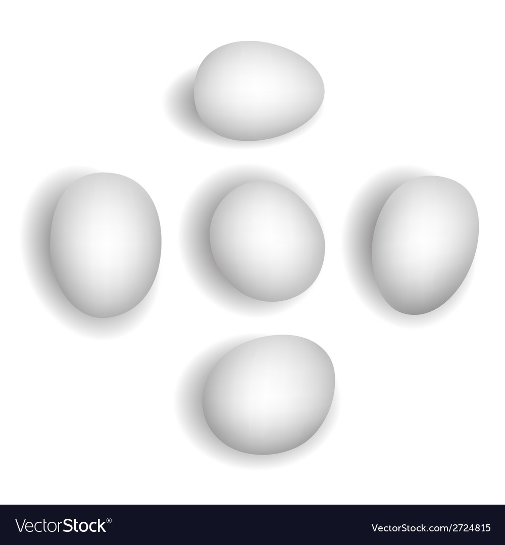 5 different photorealistic white chicken eggs vector | Price: 1 Credit (USD $1)