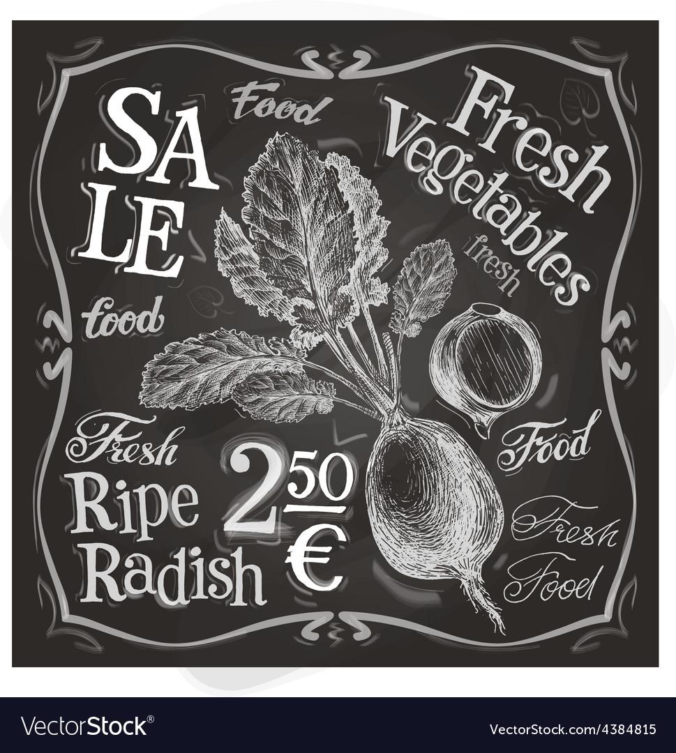Radish logo design template fresh food vector   Price: 3 Credit (USD $3)