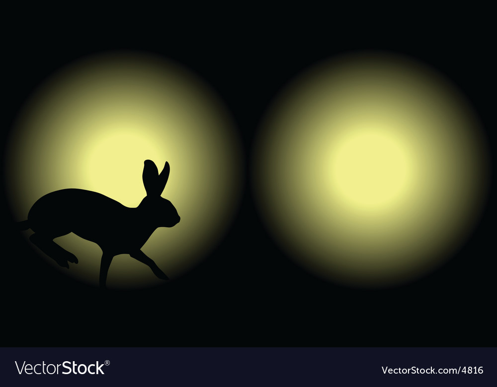 Headlight rabbit vector | Price: 1 Credit (USD $1)