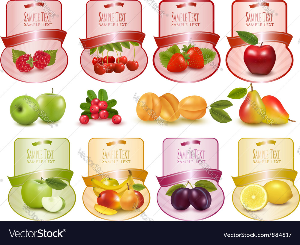 Labels with berries and fruit vector | Price: 3 Credit (USD $3)
