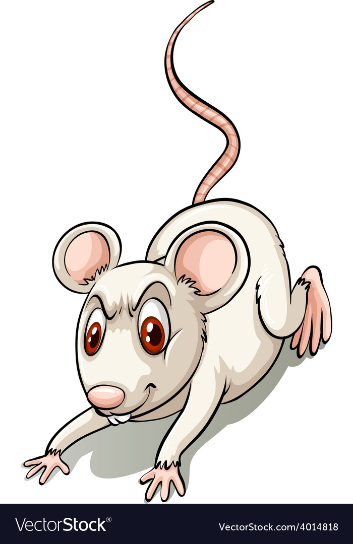 Angry small mouse vector | Price: 3 Credit (USD $3)