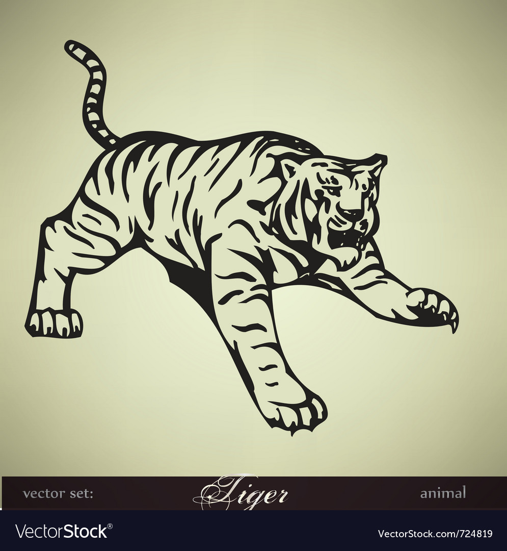 Wild tiger vector | Price: 1 Credit (USD $1)