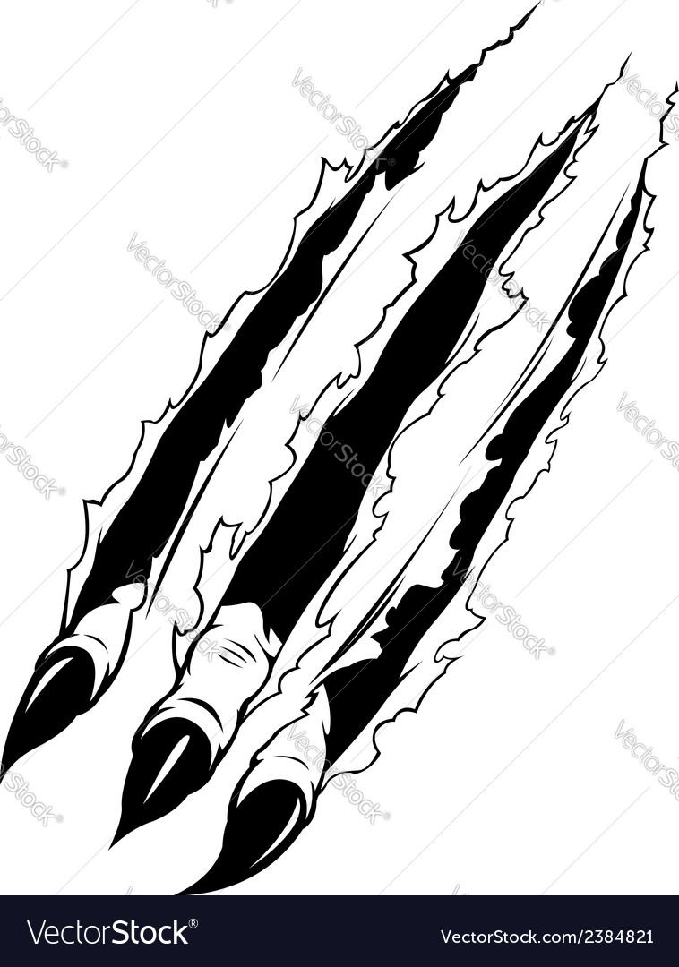 Claws ripping paper vector | Price: 1 Credit (USD $1)