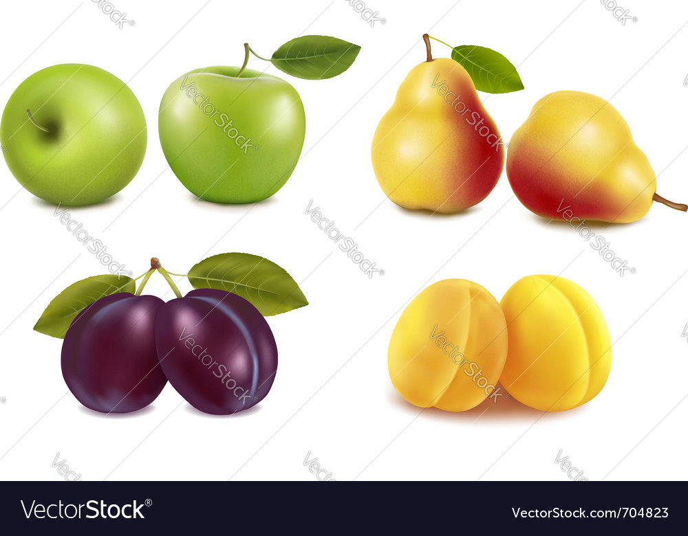 Group with different sorts of fruit vector | Price: 3 Credit (USD $3)