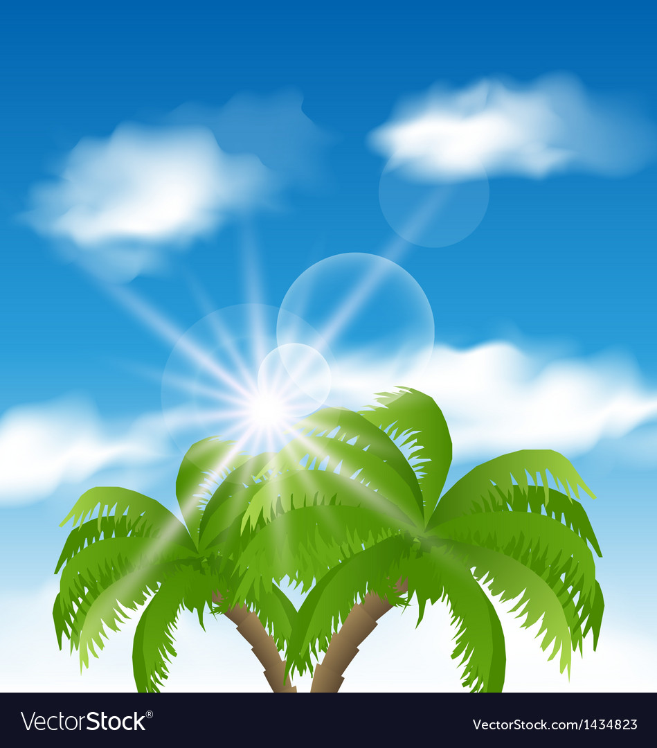 Summer background with sunlight and palmtree vector | Price: 1 Credit (USD $1)