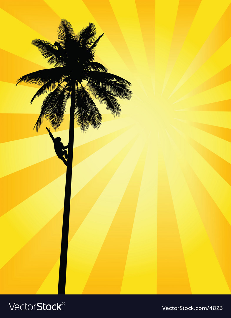 Sun palm vector | Price: 1 Credit (USD $1)