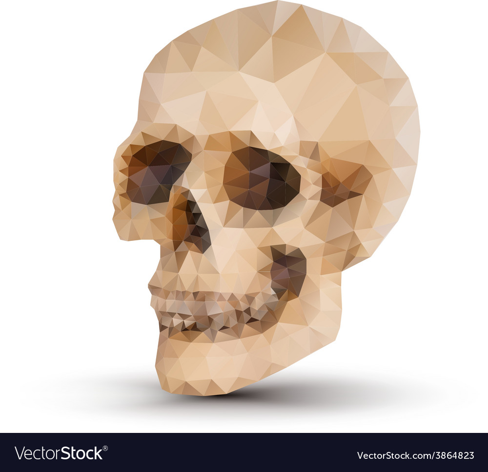 Triangle human skull vector | Price: 1 Credit (USD $1)