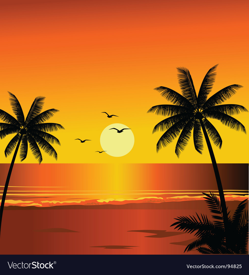 Beach sunset vector | Price: 1 Credit (USD $1)