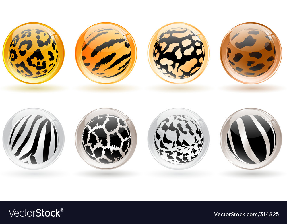 Glossy balls vector | Price: 3 Credit (USD $3)