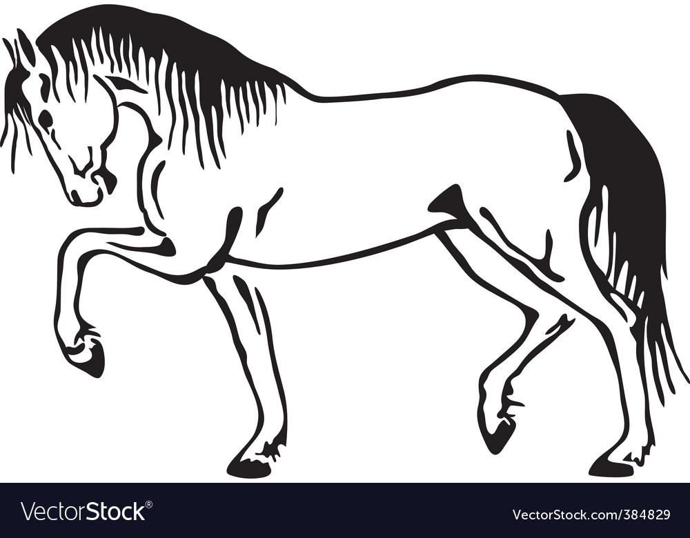 Horse sketch vector | Price: 1 Credit (USD $1)