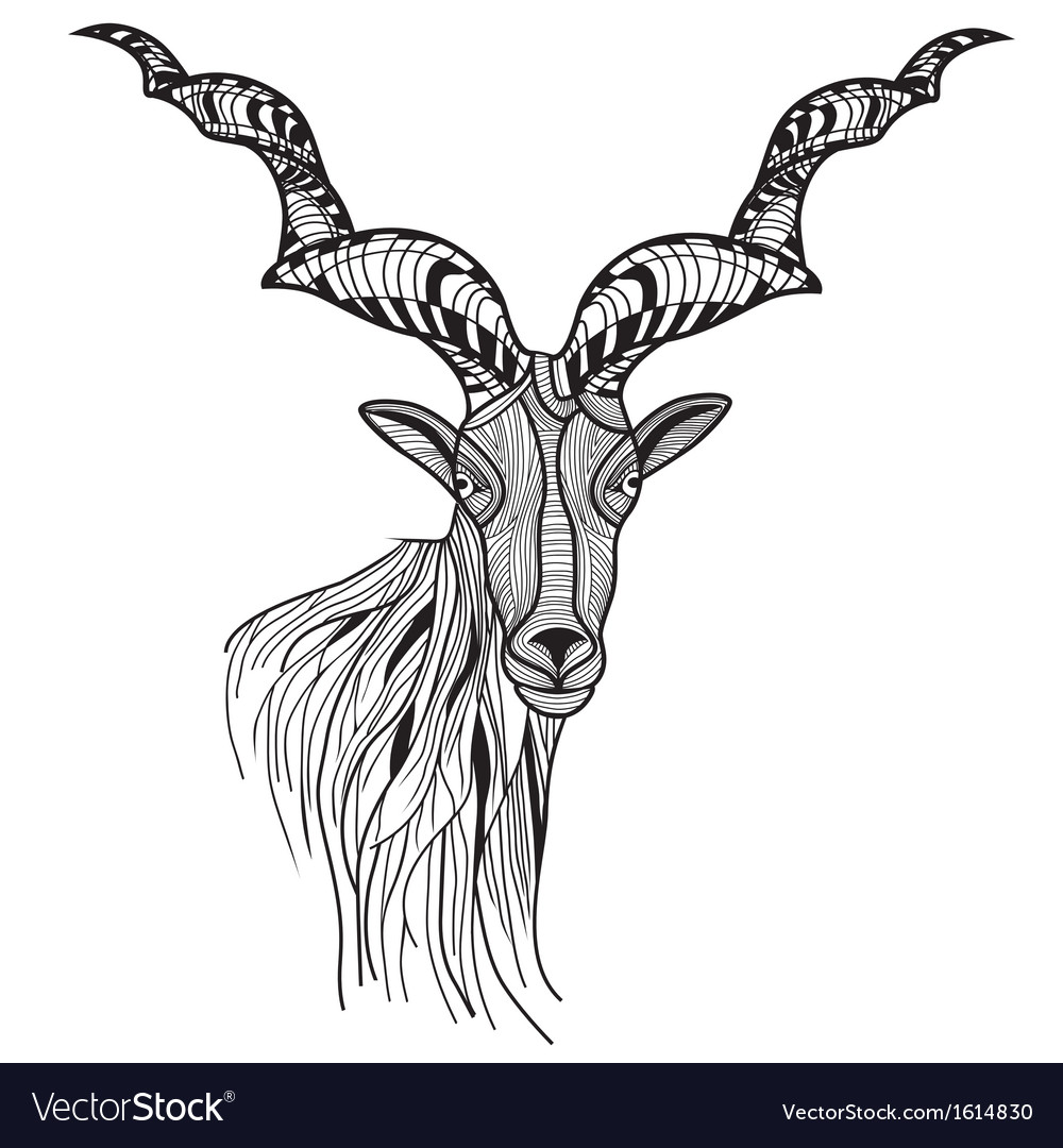 Goat sketch head or mountain goat line art vector | Price: 1 Credit (USD $1)