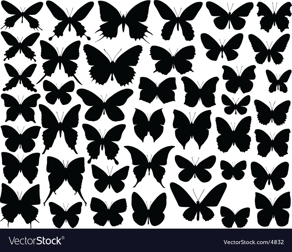 Butterfly shapes vector | Price: 1 Credit (USD $1)