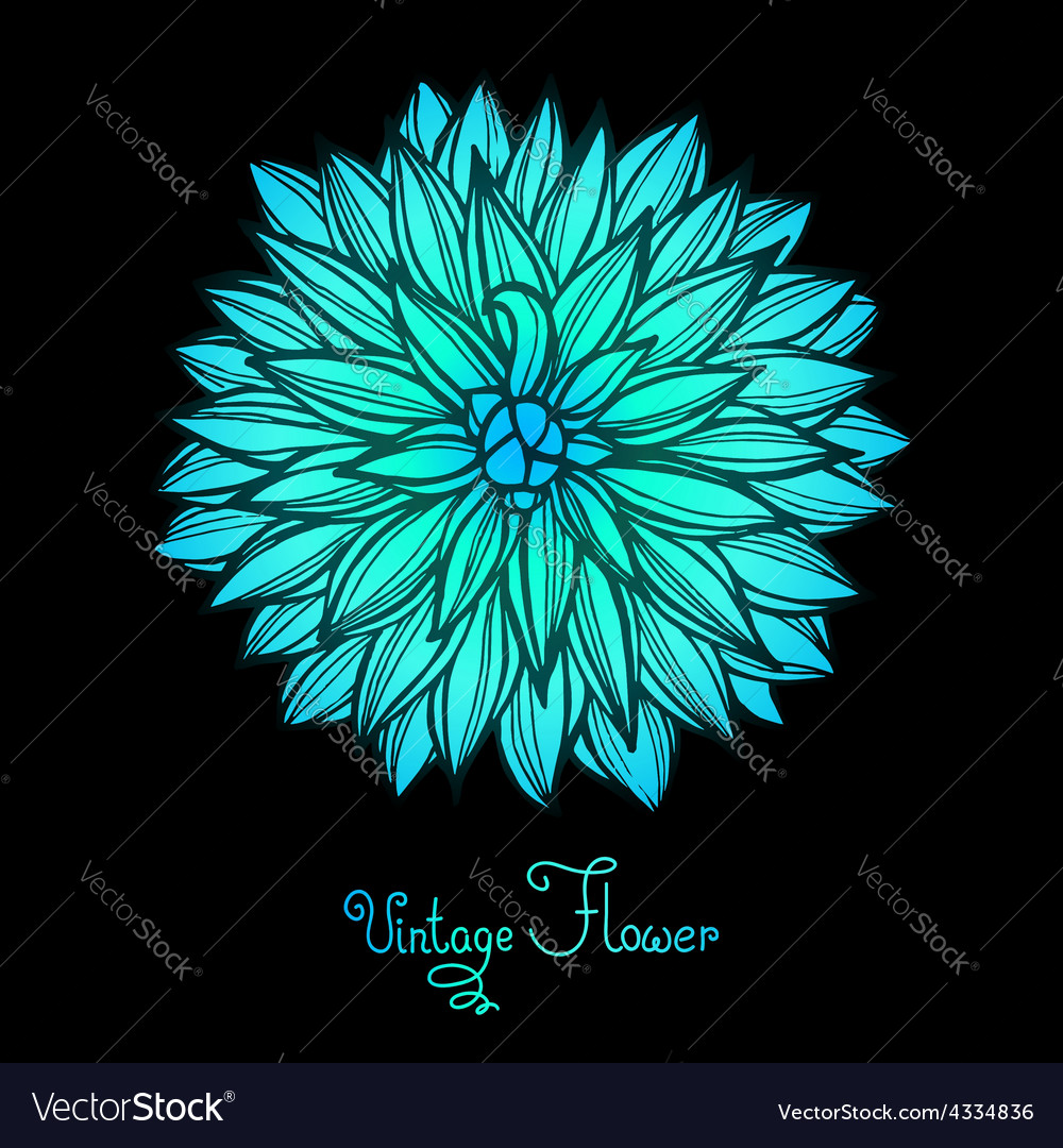 Bright dahlia flower isolated for design vector | Price: 1 Credit (USD $1)
