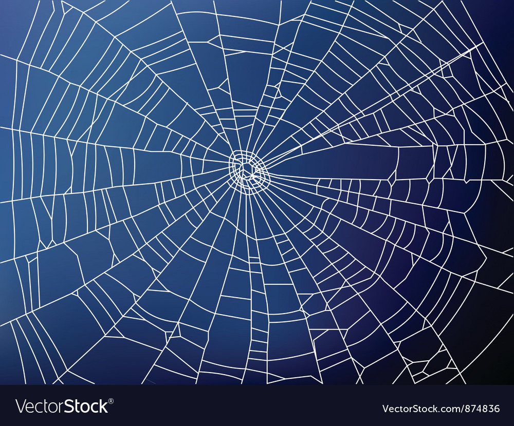 Spider web2 resize vector | Price: 1 Credit (USD $1)