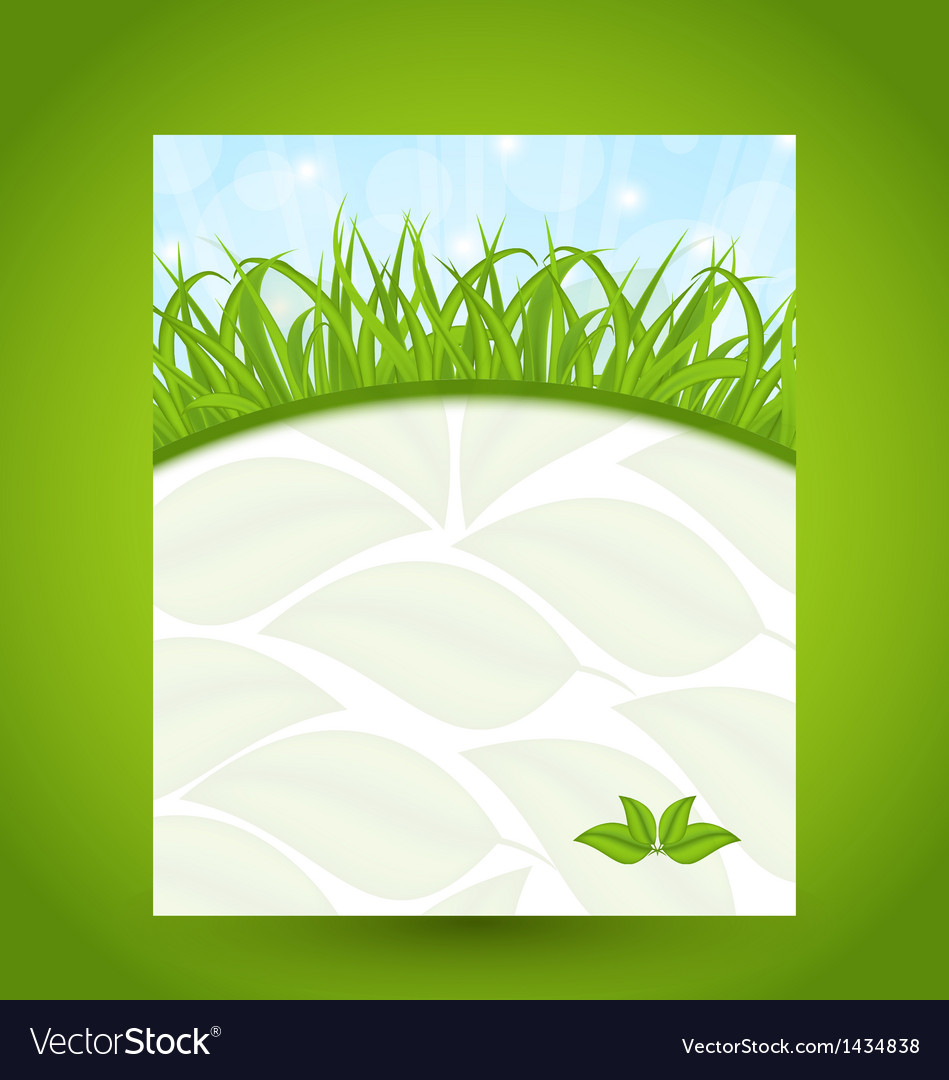 Ecology card with green grass and eco leaves vector | Price: 1 Credit (USD $1)