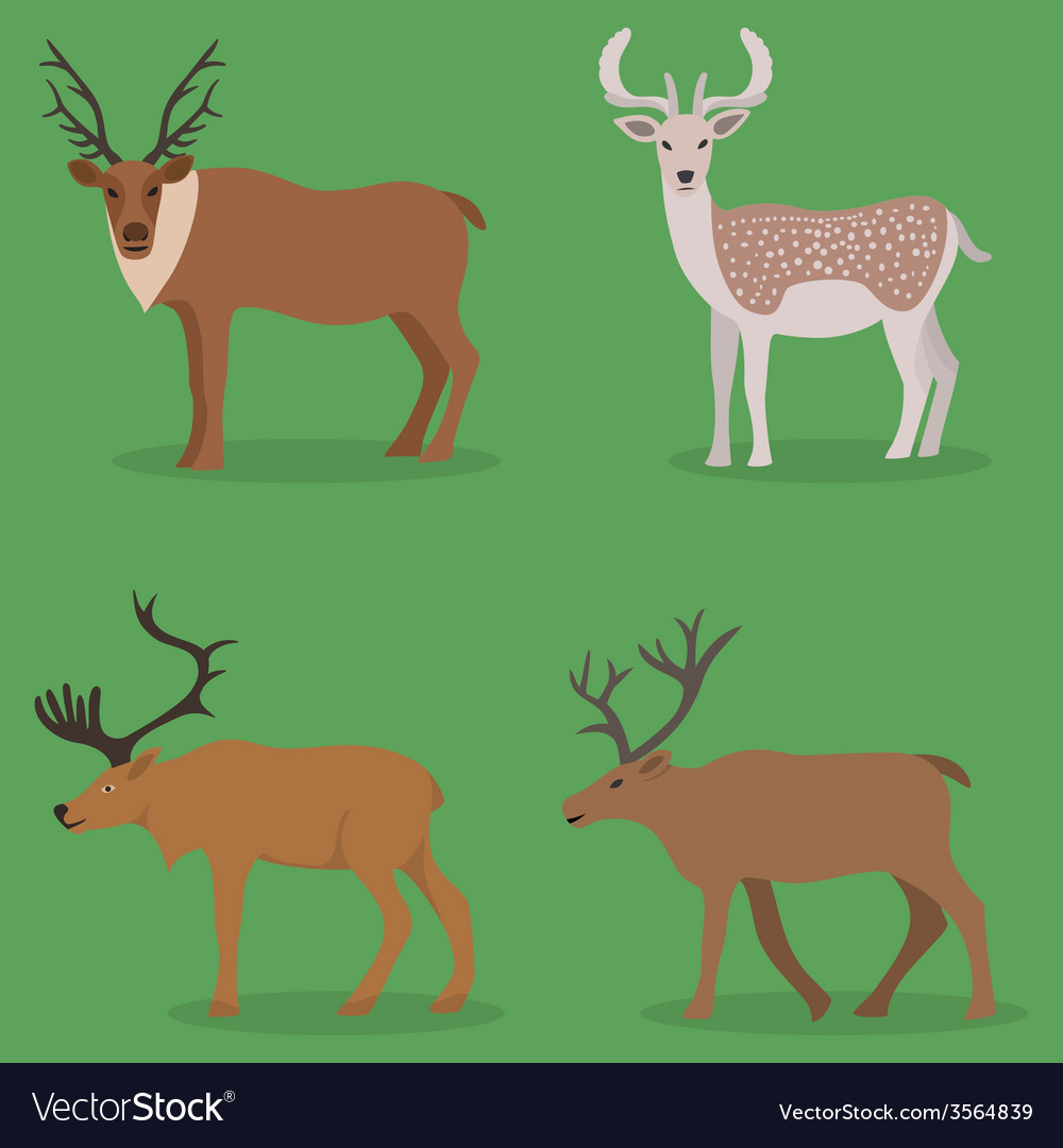 Collection of deer in a flat design vector | Price: 1 Credit (USD $1)