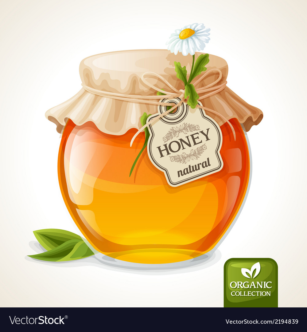 Honey jar glass vector | Price: 1 Credit (USD $1)