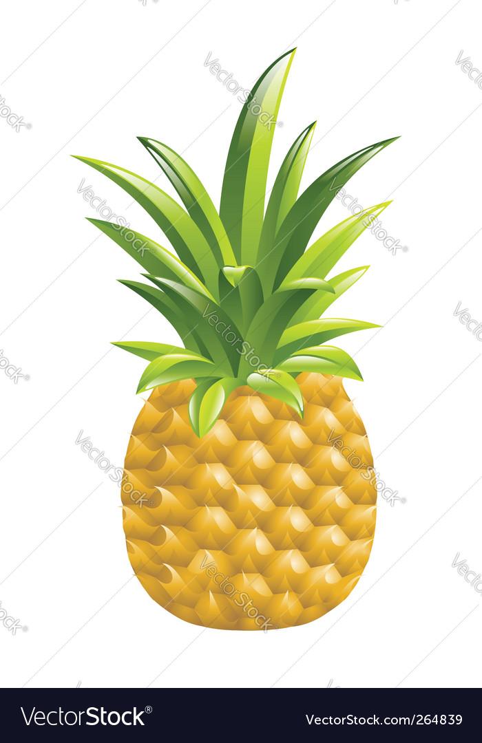 Pineapple icon vector   Price: 1 Credit (USD $1)