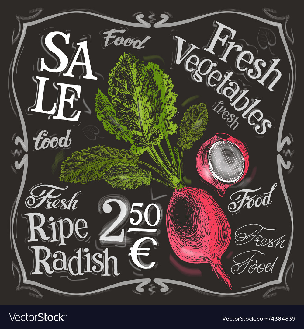 Ripe radish logo design template fresh vector | Price: 3 Credit (USD $3)