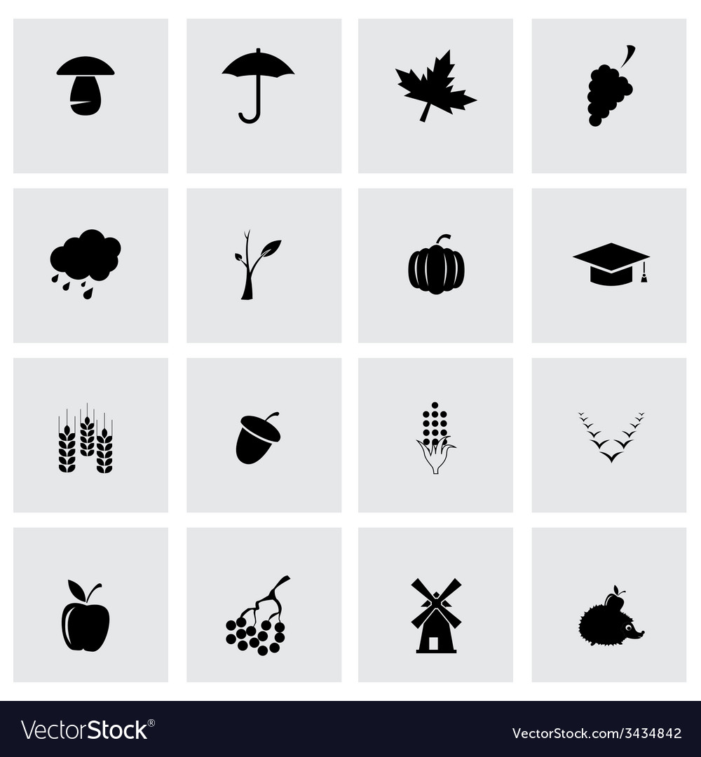 Black autumn icon set vector | Price: 1 Credit (USD $1)