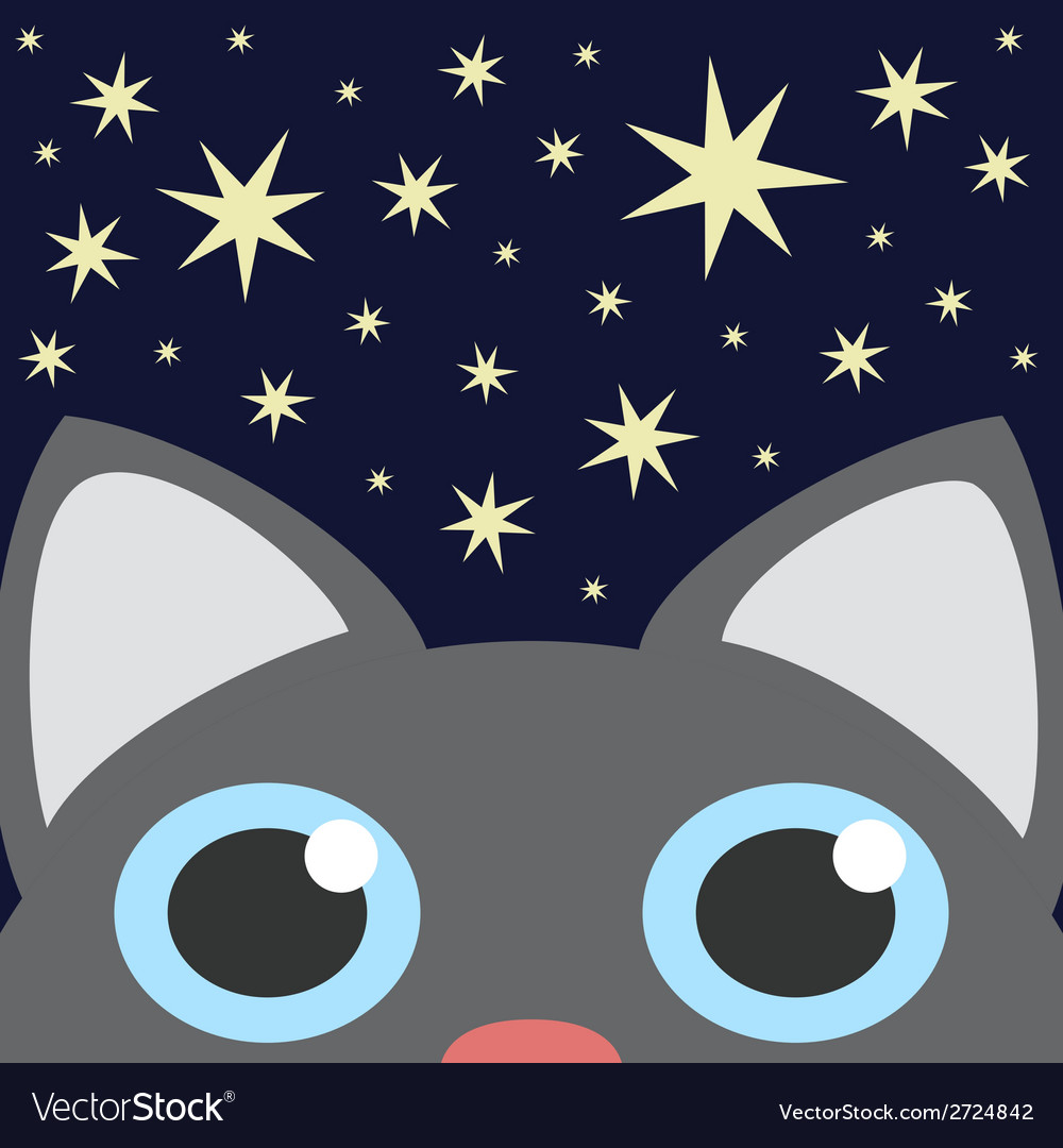 Grey cat looking up in night star sky vector | Price: 1 Credit (USD $1)