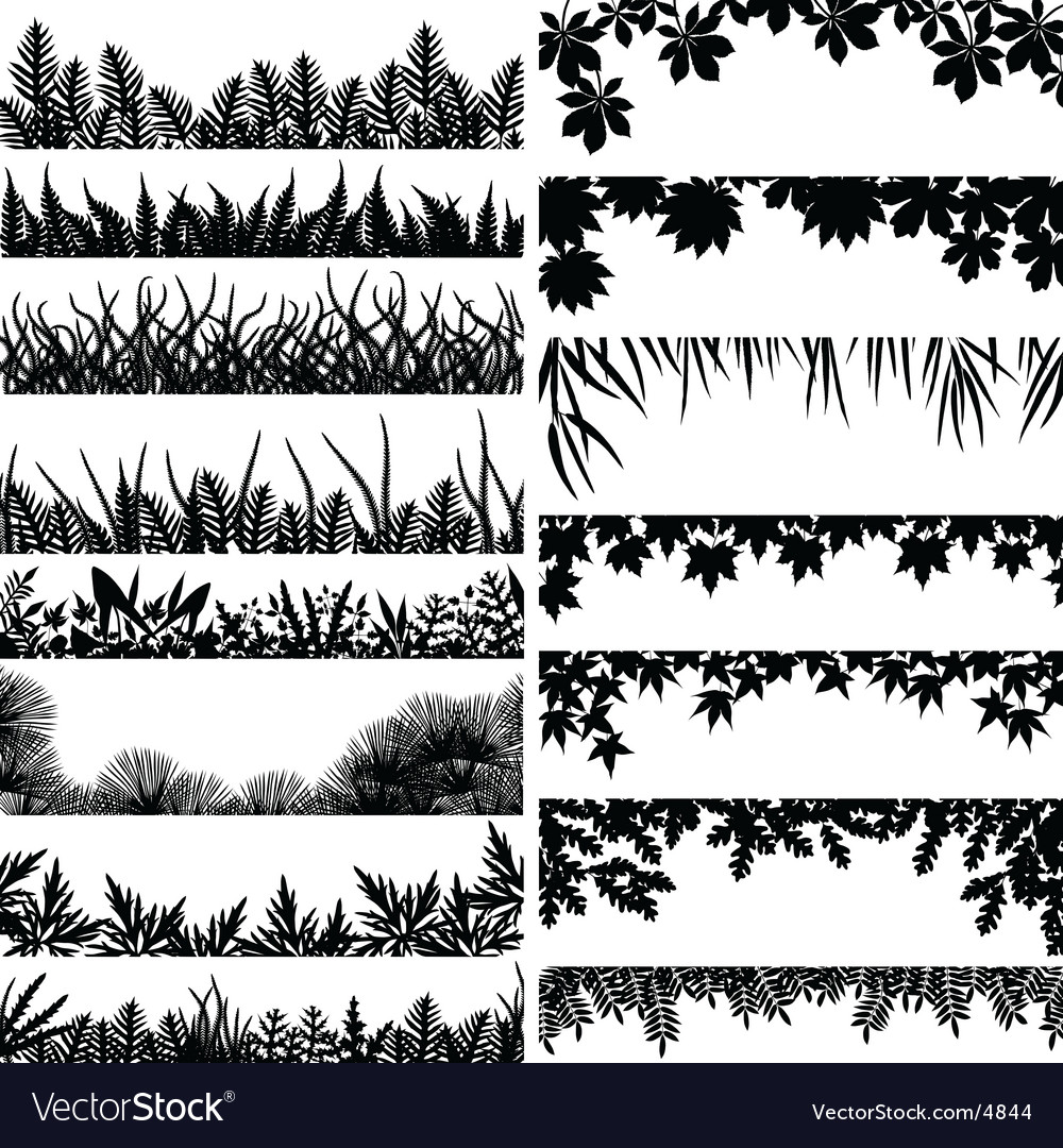 Plant borders vector | Price: 3 Credit (USD $3)