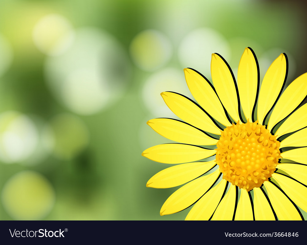 A yellow flower vector | Price: 1 Credit (USD $1)