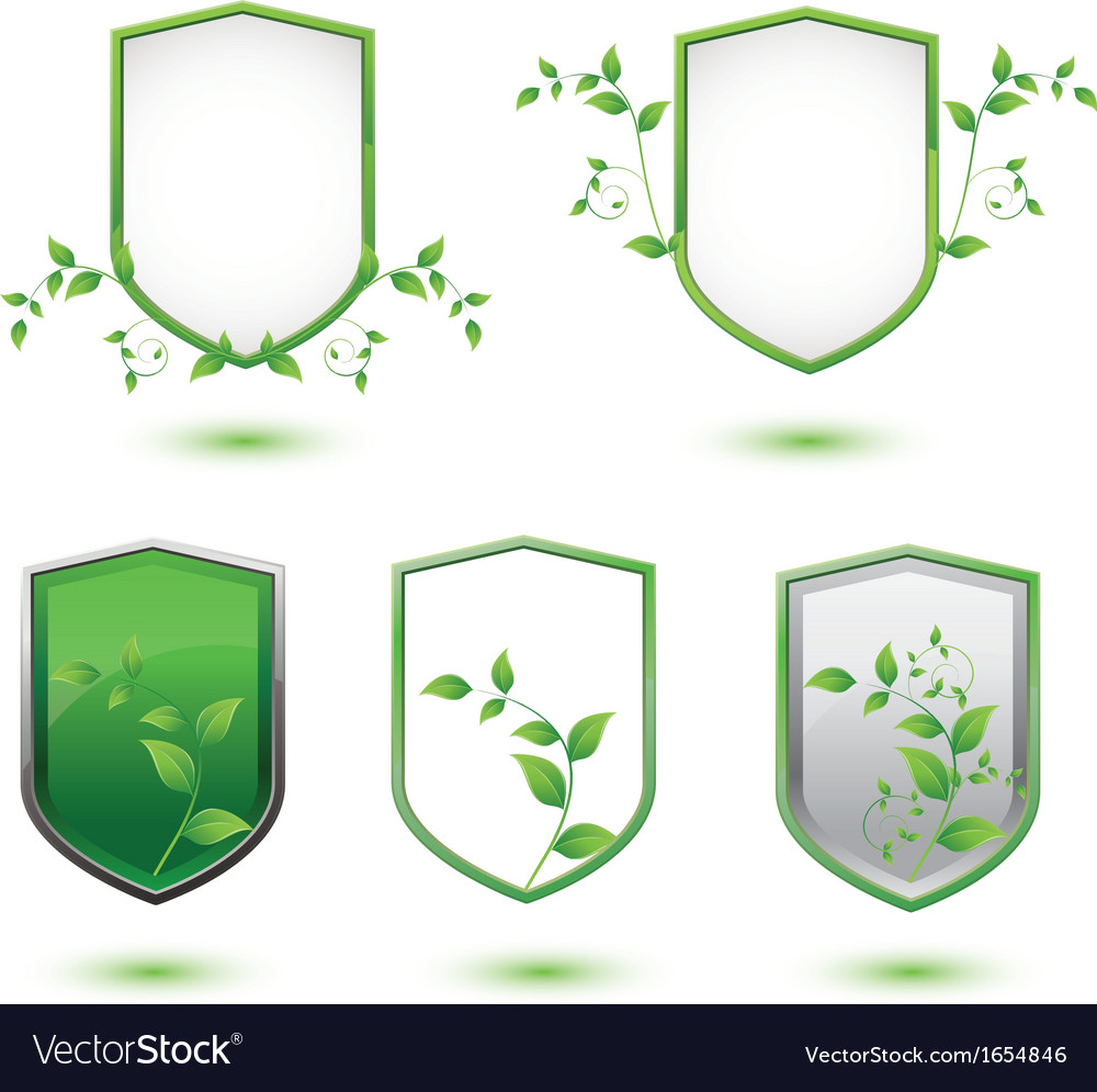 Insulated shield banner with green leaves vector | Price: 1 Credit (USD $1)